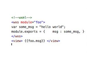 WXS数据类型
