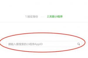 AppID查询小程序名称方法
